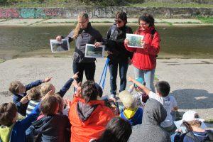 Die Schülerinnen und Schüler vergleichen den Wienfluss mit und ohne Renaturalisierung-Maßnahmen