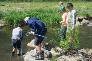 Mit voller Freude dürfen alle Kinder ins Wasser um die Tiere zu sammeln