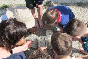 Die Kinder zeigen großes Interesse über die Vielfalt der Wasserlebewesen